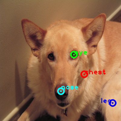2008_002767-dog_0_ppm10.png