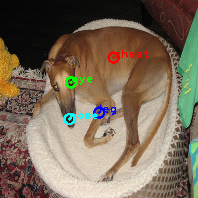 2008_002859-dog_0_ppm10.png