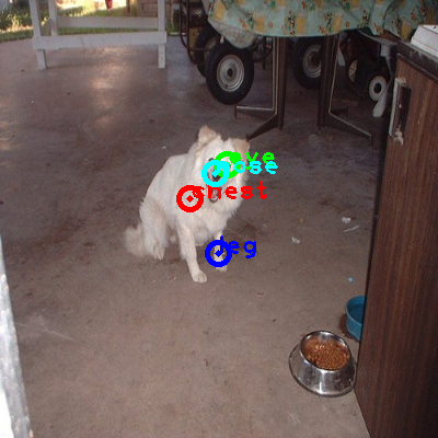 2008_003101-dog_0_ppm10.png