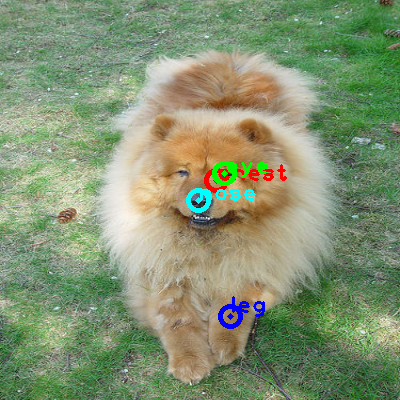 2008_004021-dog_0_ppm10.png