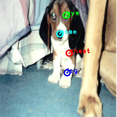 2008_004106-dog_0_ppm10.png