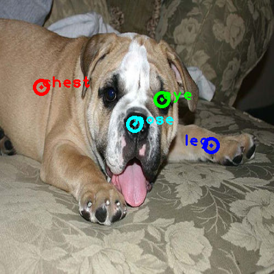 2008_004273-dog_0_ppm10.png