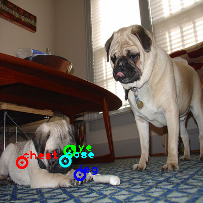 2008_004293-dog_0_ppm10.png