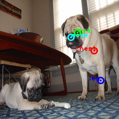 2008_004293-dog_1_ppm10.png
