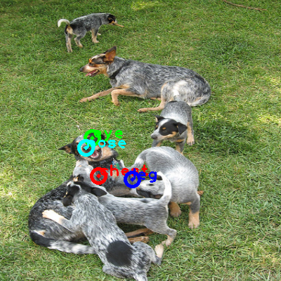 2008_004590-dog_0_ppm10.png
