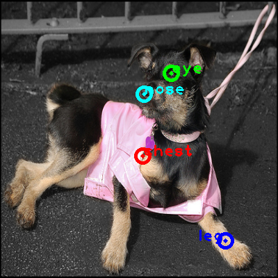 2008_004833-dog_0_ppm10.png