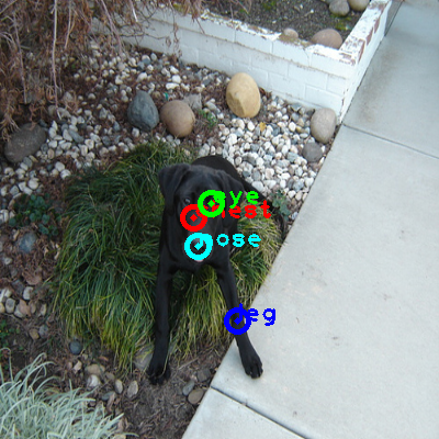 2008_004931-dog_0_ppm10.png
