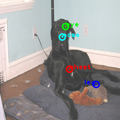 2008_005082-dog_0_ppm10.png