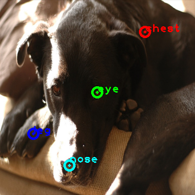 2008_005335-dog_0_ppm10.png