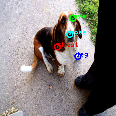 2008_005379-dog_0_ppm10.png