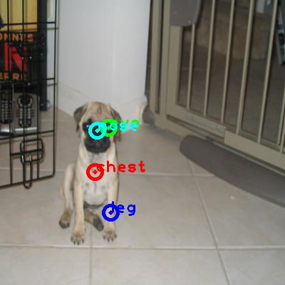 2008_005415-dog_0_ppm10.png