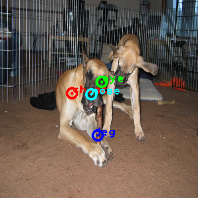 2008_006049-dog_0_ppm10.png