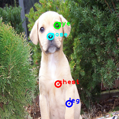 2008_006170-dog_0_ppm10.png