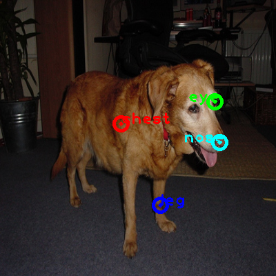 2008_006203-dog_0_ppm10.png