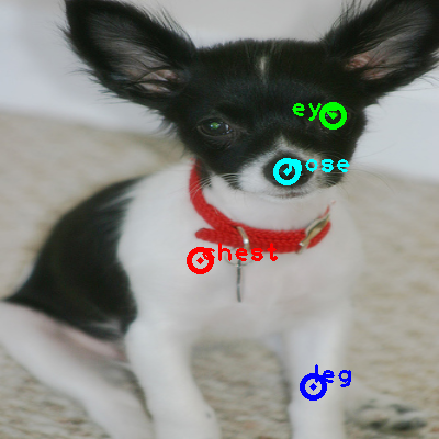 2008_006239-dog_0_ppm10.png