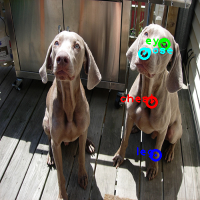 2008_006502-dog_0_ppm10.png