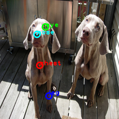 2008_006502-dog_1_ppm10.png