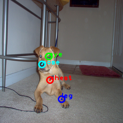 2008_006511-dog_0_ppm10.png