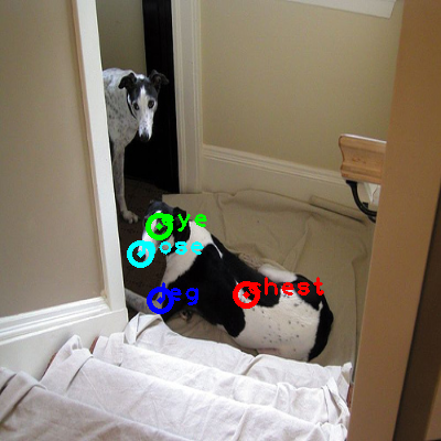 2008_006602-dog_0_ppm10.png