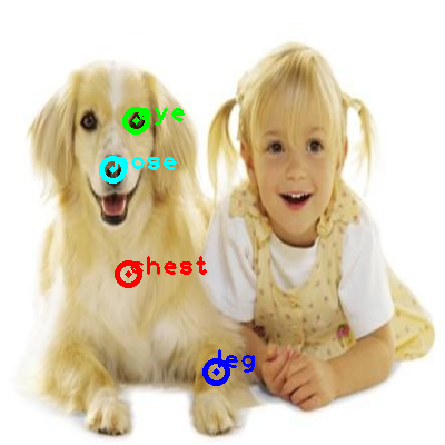 2008_006716-dog_0_ppm10.png