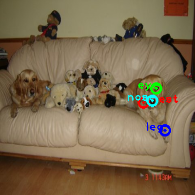 2008_007021-dog_0_ppm10.png