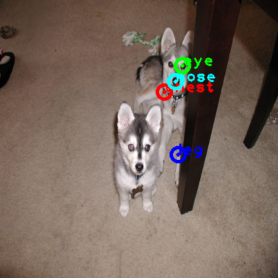 2008_007073-dog_0_ppm10.png