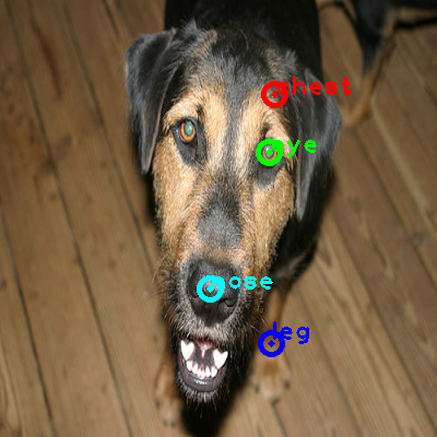 2008_007236-dog_0_ppm10.png