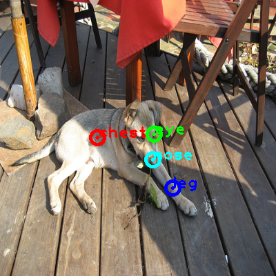 2008_007378-dog_0_ppm10.png