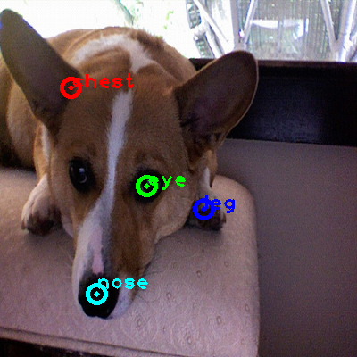 2008_007471-dog_0_ppm10.png