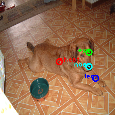 2008_007513-dog_0_ppm10.png