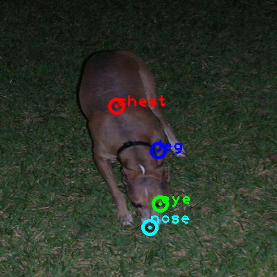 2008_007519-dog_0_ppm10.png