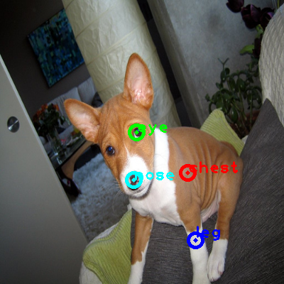 2008_007538-dog_0_ppm10.png