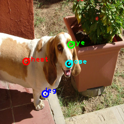 2008_007621-dog_0_ppm10.png