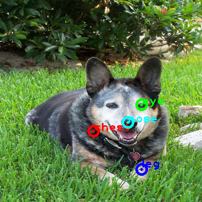 2008_007781-dog_0_ppm10.png