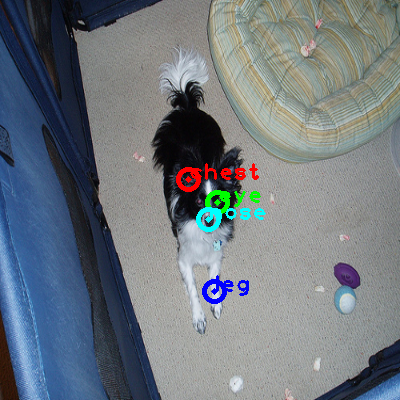 2008_007875-dog_0_ppm10.png