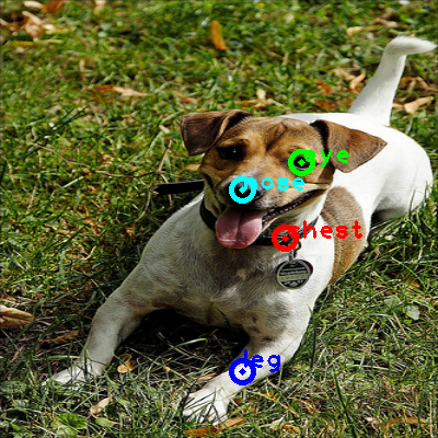 2009_000452-dog_0_ppm10.png
