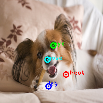 2009_000512-dog_0_ppm10.png