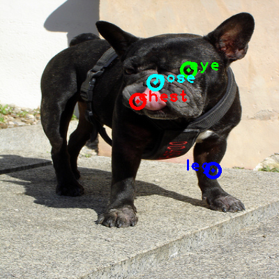 2009_000647-dog_0_ppm10.png