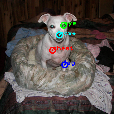2009_000770-dog_0_ppm10.png