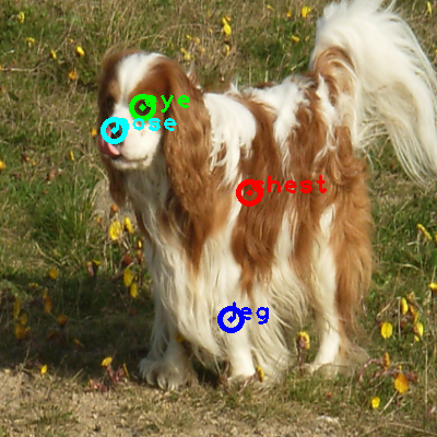 2009_001288-dog_0_ppm10.png