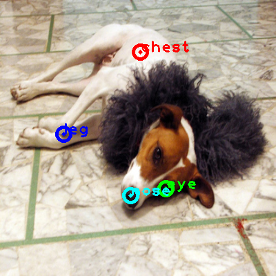 2009_001568-dog_0_ppm10.png
