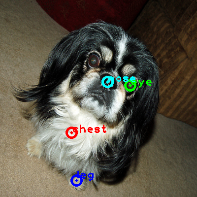 2009_002456-dog_0_ppm10.png