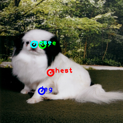 2009_002553-dog_0_ppm10.png