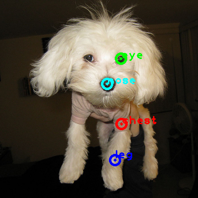2009_002605-dog_0_ppm10.png
