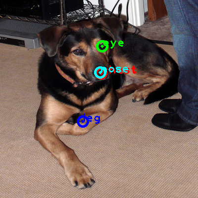 2009_003986-dog_0_ppm10.png