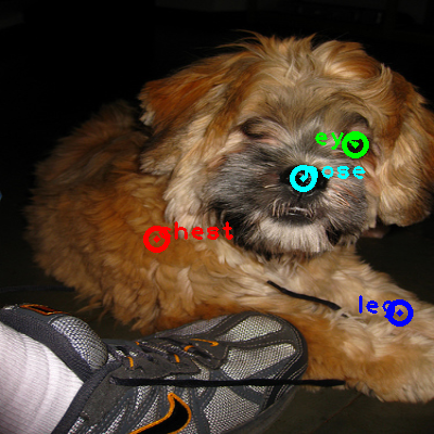 2009_004277-dog_0_ppm10.png