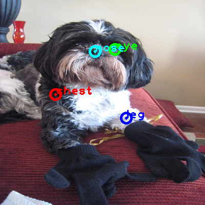 2009_004361-dog_0_ppm10.png