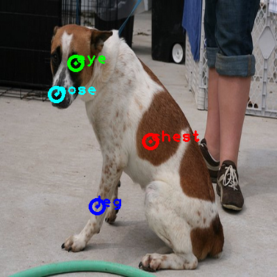 2009_004507-dog_0_ppm10.png
