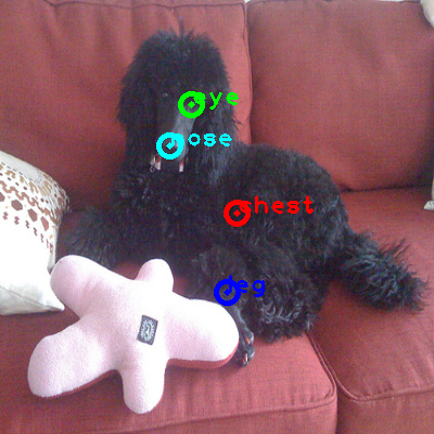 2009_004560-dog_0_ppm10.png