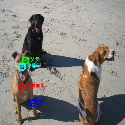 2010_000061-dog_0_ppm10.png